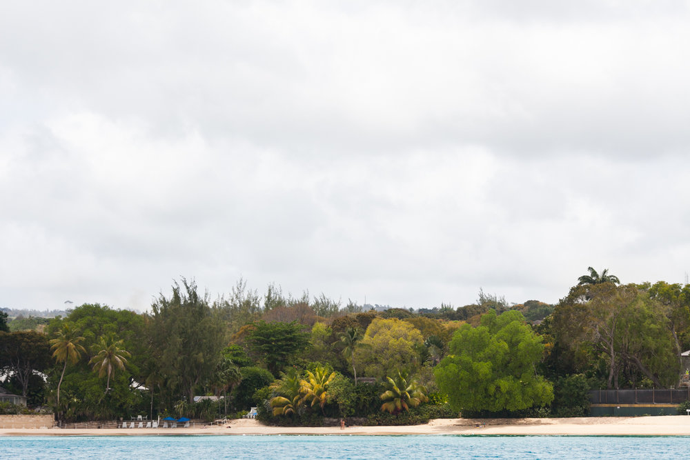 Barbados_2013-04-25_6848.jpg