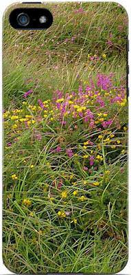 Field of Irish Wildflowers