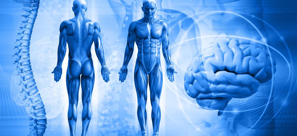 Greater Occipital Nerve Block — Dublin Pain Clinic