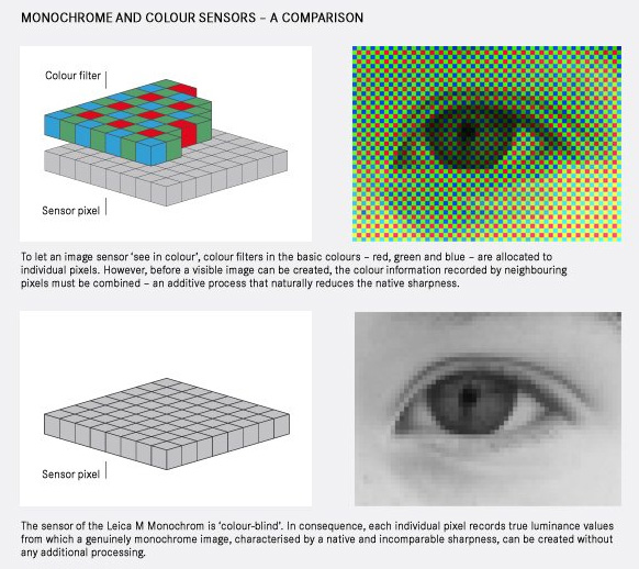 leica-m-monochrom-sensor-diagram.jpg