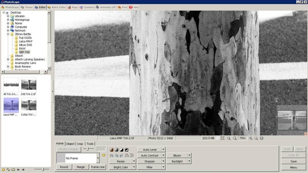 Leica M9P Crop.jpg