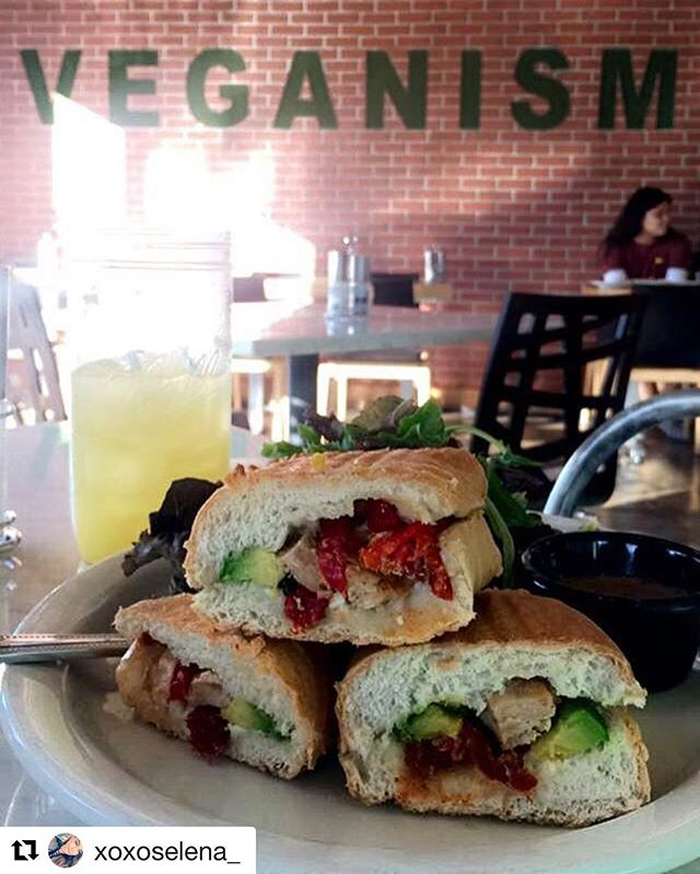 Vegetable panini 😋 #myvegangold #myvegan #whatveganseat #veganfood #vganism #panini #plantbased #vegetable #lunch #dinner #food #silverlake #govegan #veganforever ..... with @repostapp ・・・ Vegan Dinner again, I can get use to this😋👌🏽