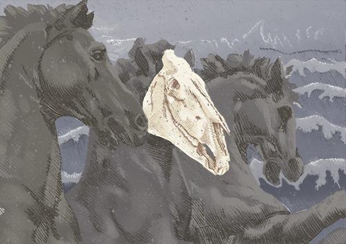 06092013_horse002