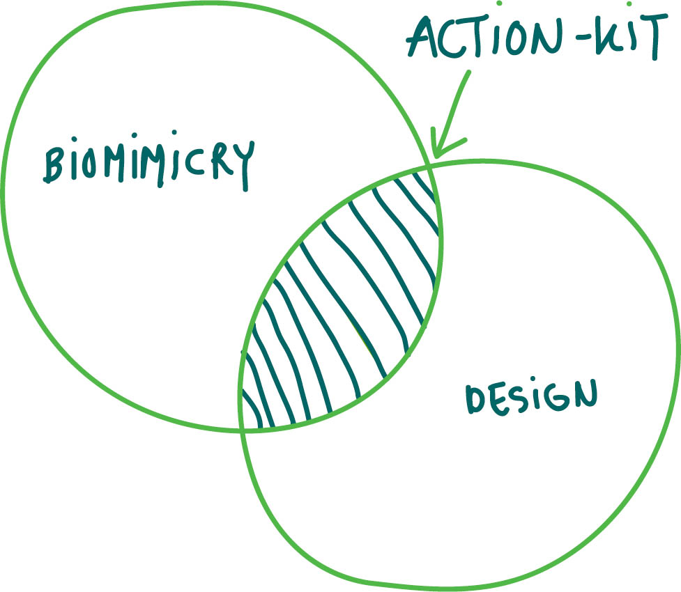 biomimicry-design.jpg