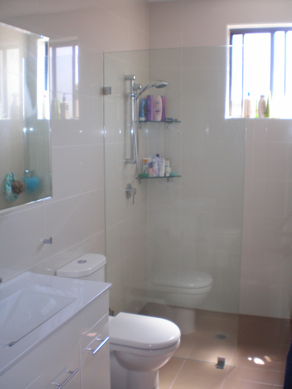 Bathroom Renovation - Lynn & Marcus, Petersham