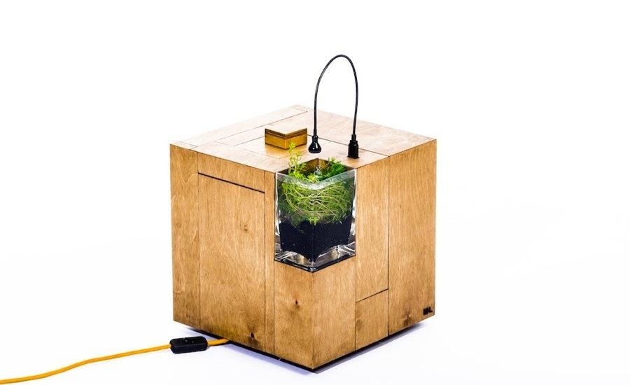 aqua cube.jpg