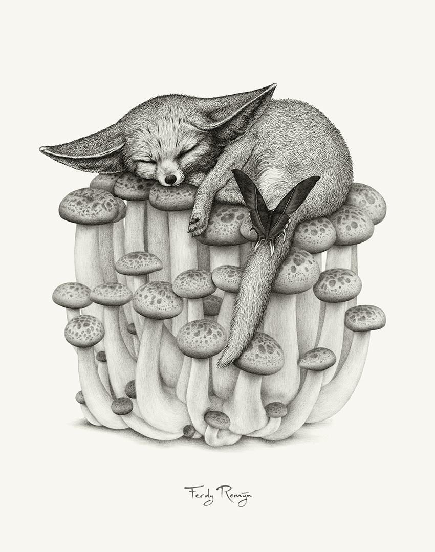 vos_paddestoelen_mot_gloom_fennec_desert_fox_swallow-tailed_moth_mushrooms_ferdy_remijn_1.jpg