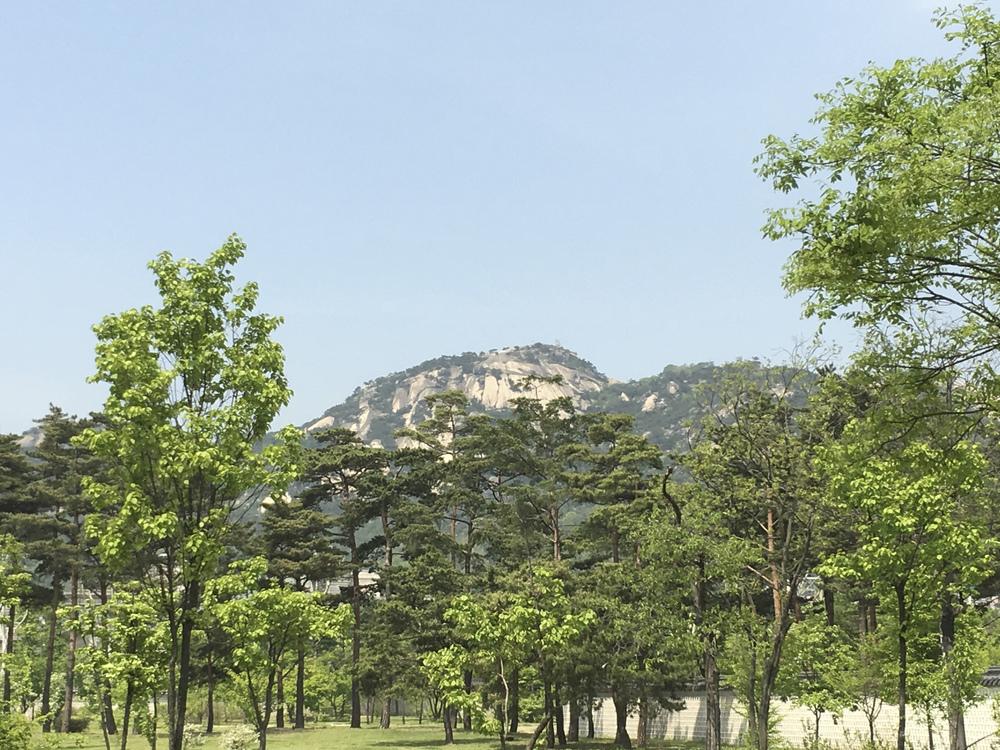 Korea Trip-81.jpg
