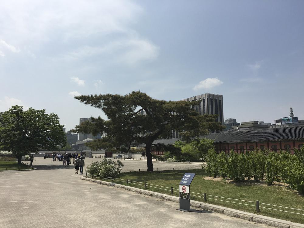 Korea Trip-86.jpg
