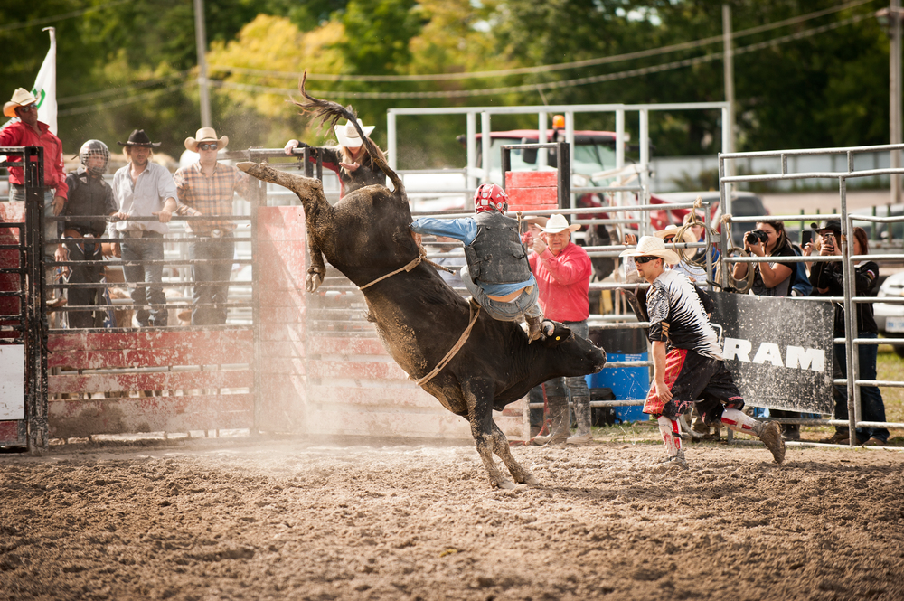 Cowboy tries his best to hold on for 8 seconds, but this Bull had a different idea. This was the best bucking bull out of them all, I couldn't believe how wild he was.