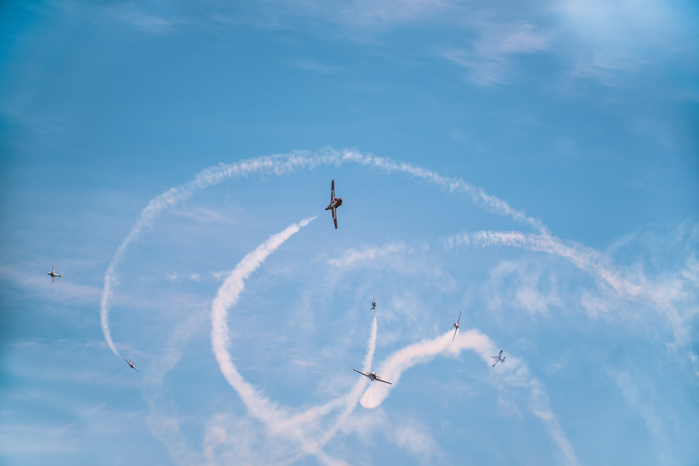 Snowbirds everywhere - Print.jpg