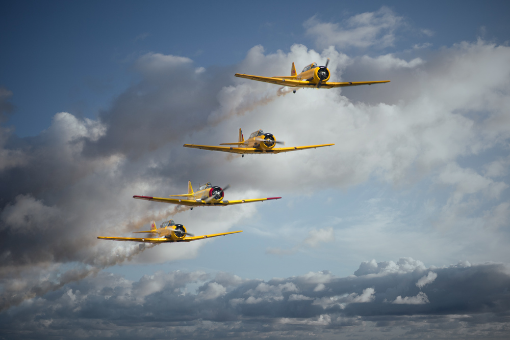 Harvards in 4 - Print.jpg