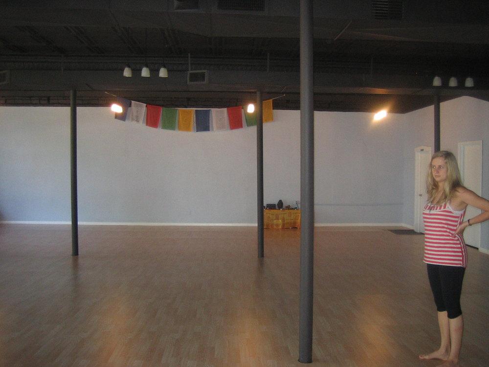 Ahimsa Yoga Oak Park 015.JPG