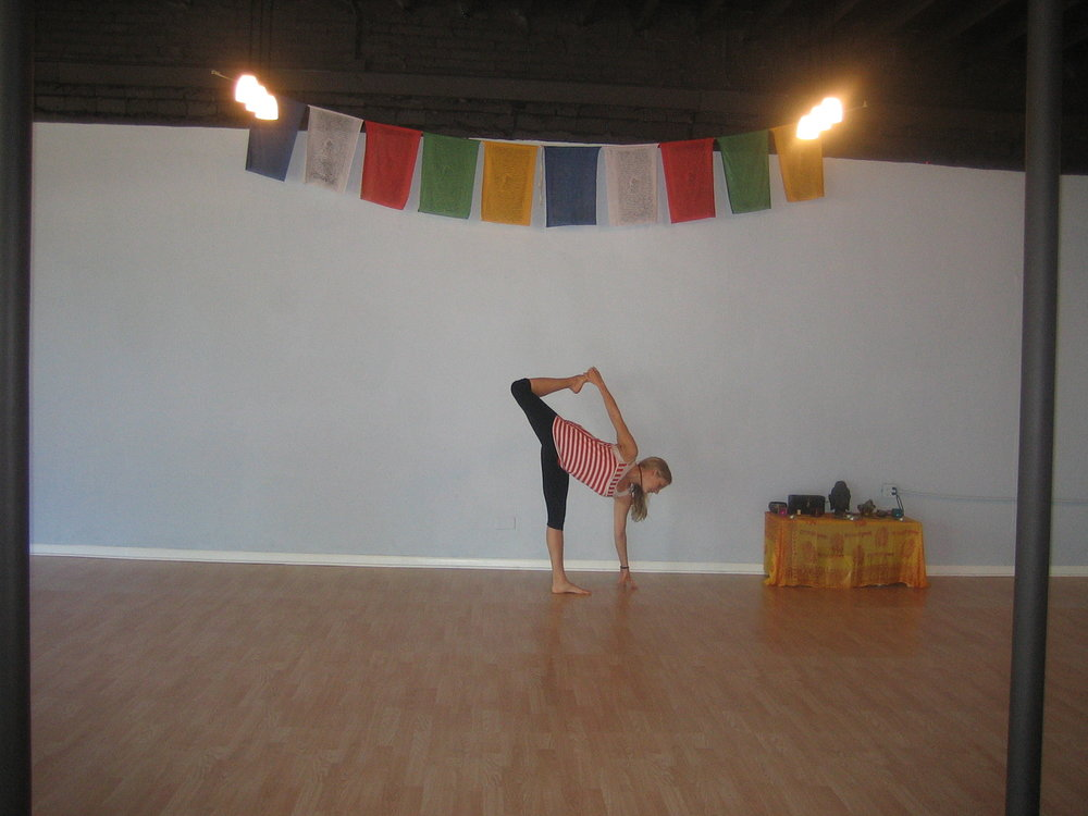 Ahimsa Yoga Oak Park 017.JPG