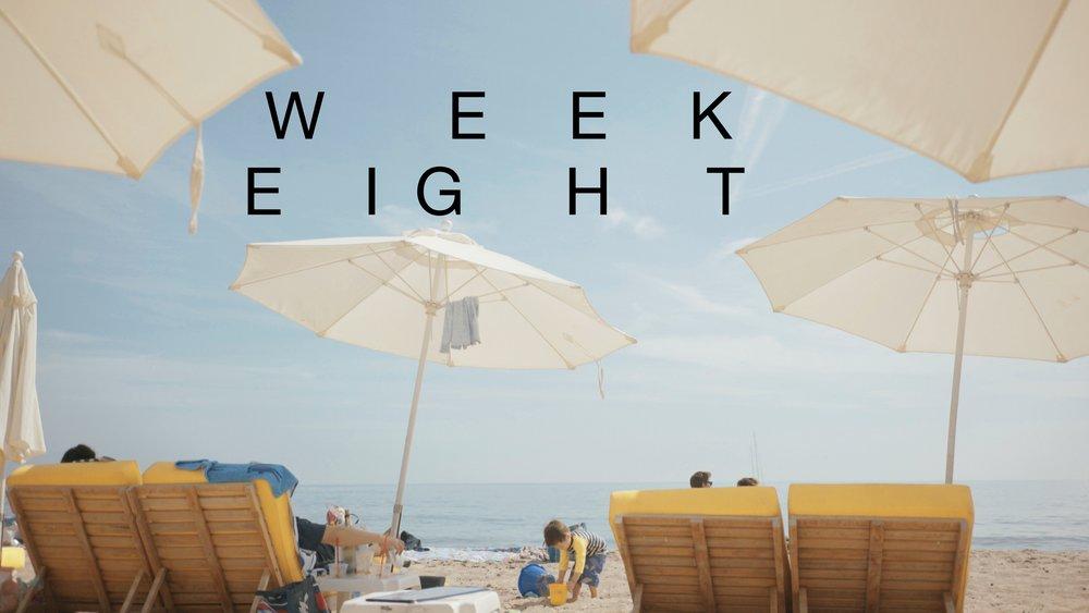week 8.jpg