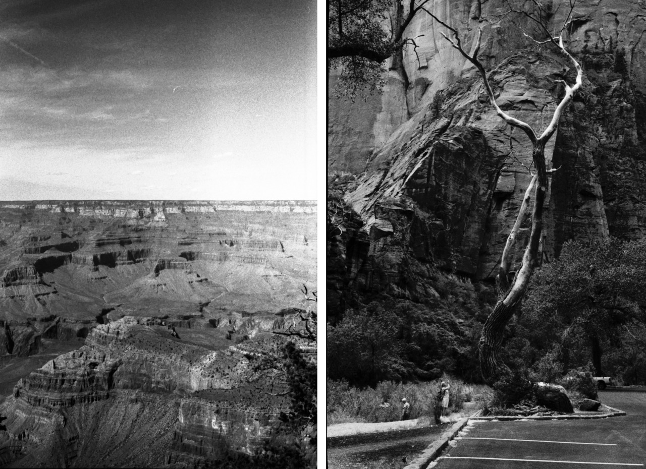 "A week ago, I developed 6 rolls of film.There was a 5% chance (a real statistical percentage that I didn't make up) that images from an ""ex"" would be on one of these 6 rolls of film.  So I didn't develop them for almost a year and a half.  These negs cooked in a car during 114 degree Mojave heat. Some of them made it to Japan and back. Others were tucked away in the back of a cabinet, buried beneath cameras with stuck shutter levers.  All undeveloped, waiting.  I was such an idiot."