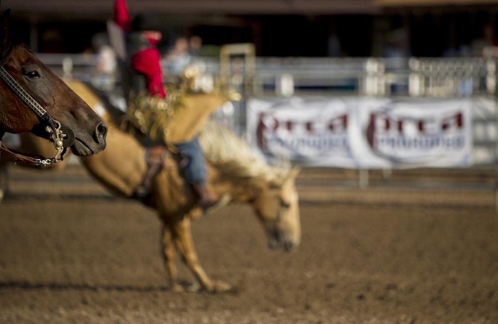 Blog-Rodeo-11.jpg