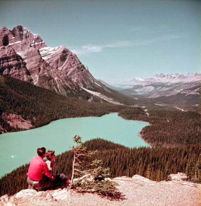 peyto_valley_Vintage.jpg