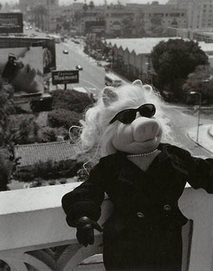miss piggy vogue