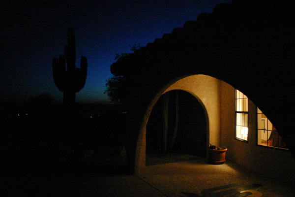 061908_cactus.jpg