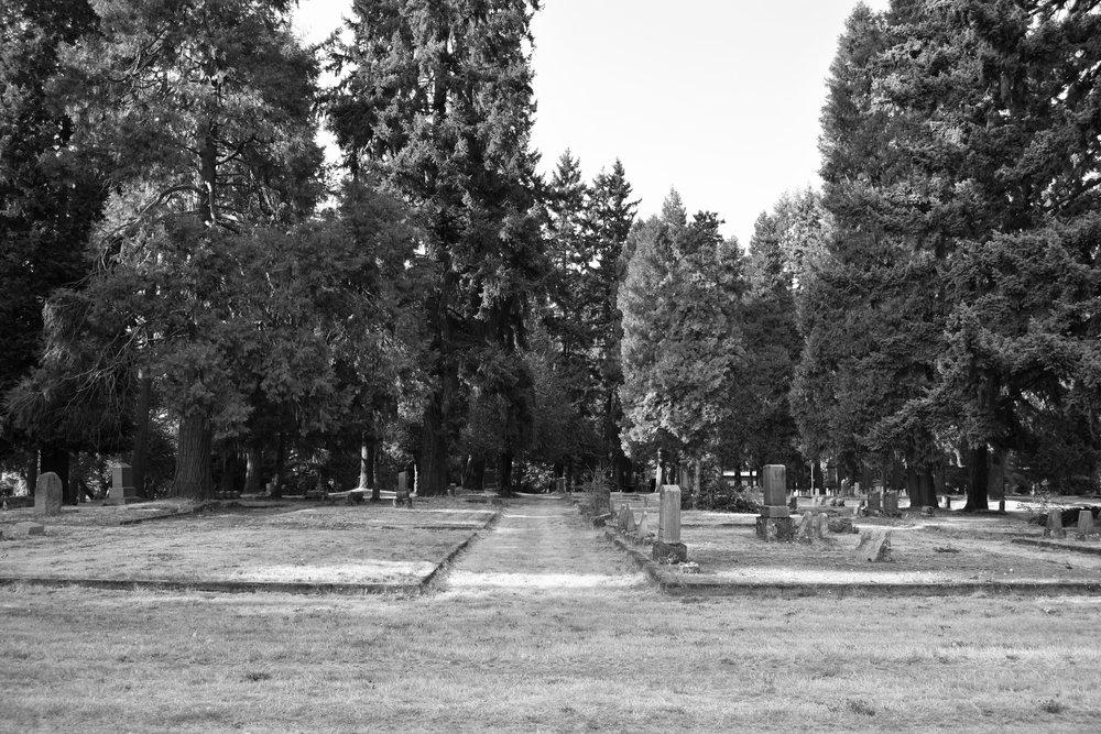 Cemetery Aisle