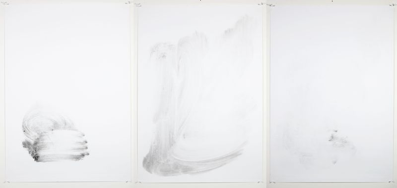 Almost Clean Surfaces , Monotype On Cartridge Paper, 70x100cm (x3),  Photograph Alan Sams