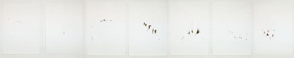 Notes For a Landscape , Monotype On Blotting Paper, 70x100cm (x7), Photograph Stephen Iles