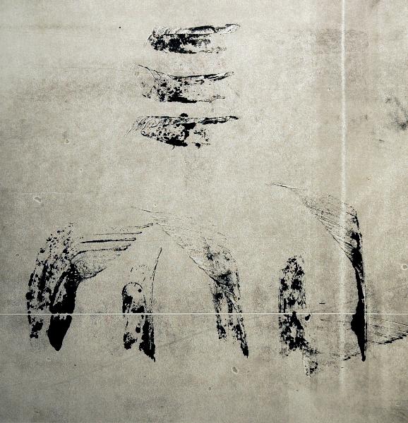 Black and Grey , MonotypeOn Cartridge Paper, 30x30cm