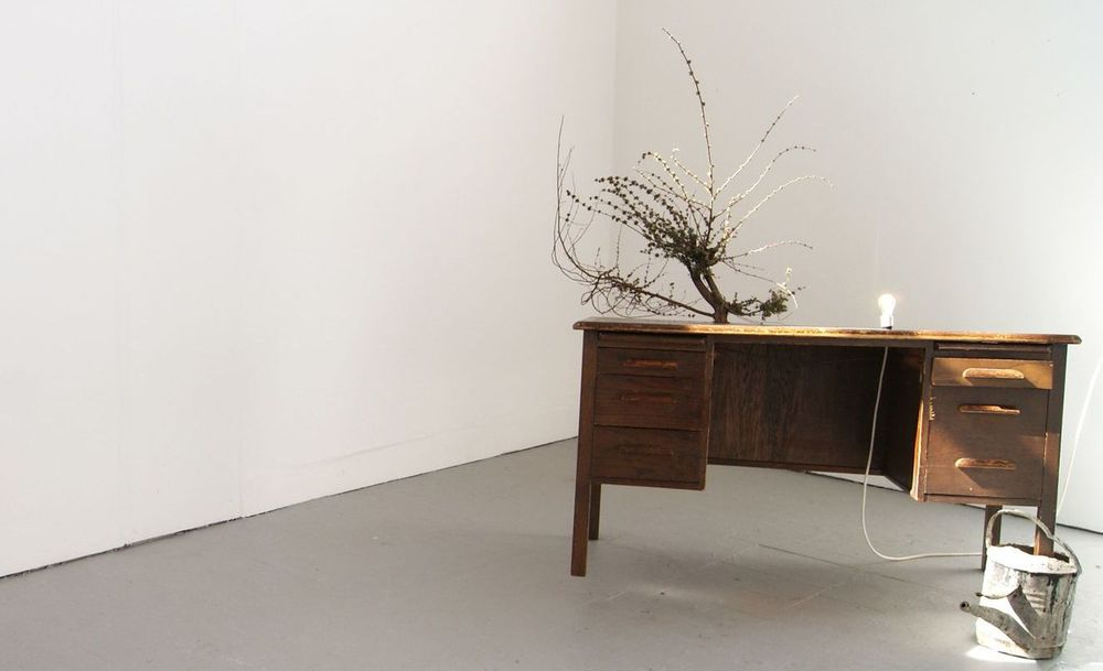 Untitled , Table, Tree Branch, Lamp and Metal Watering Can, 2011