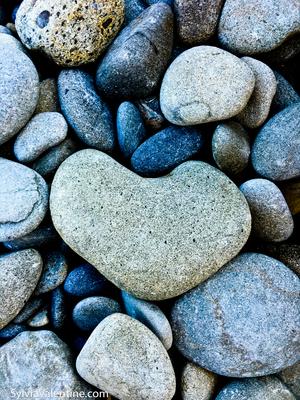 coast stones WM 4399 websize copy.jpg
