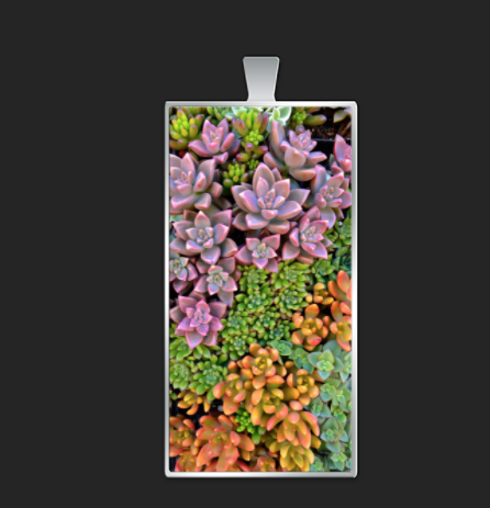 Succulent Candy rectangle $45