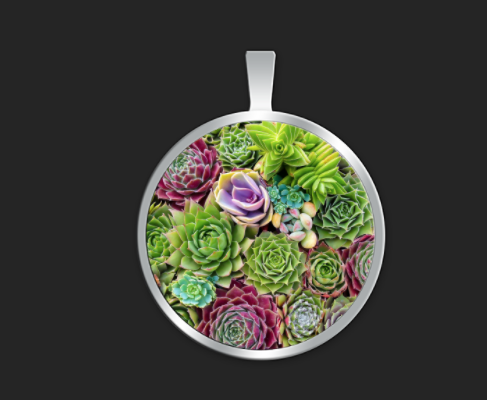 Succulent Bliss small round $35
