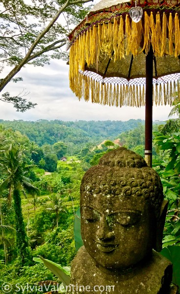 Ubud Umbrella Bali