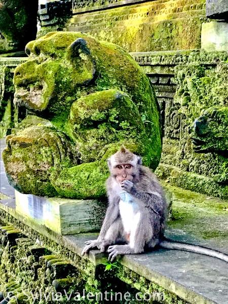 Monkey Statue Bali