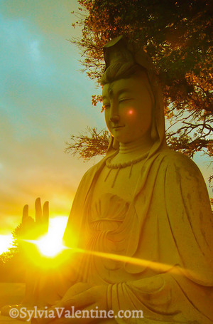 Monastery Buddha (Kim Son Monastery, CA)