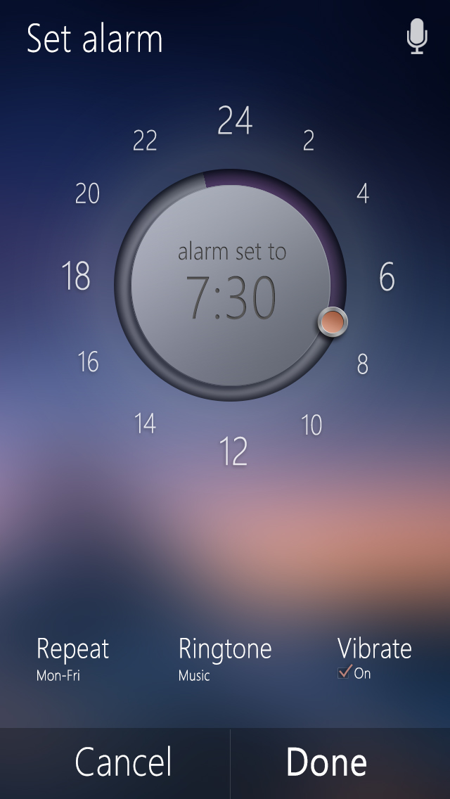 Set Alarm Interface