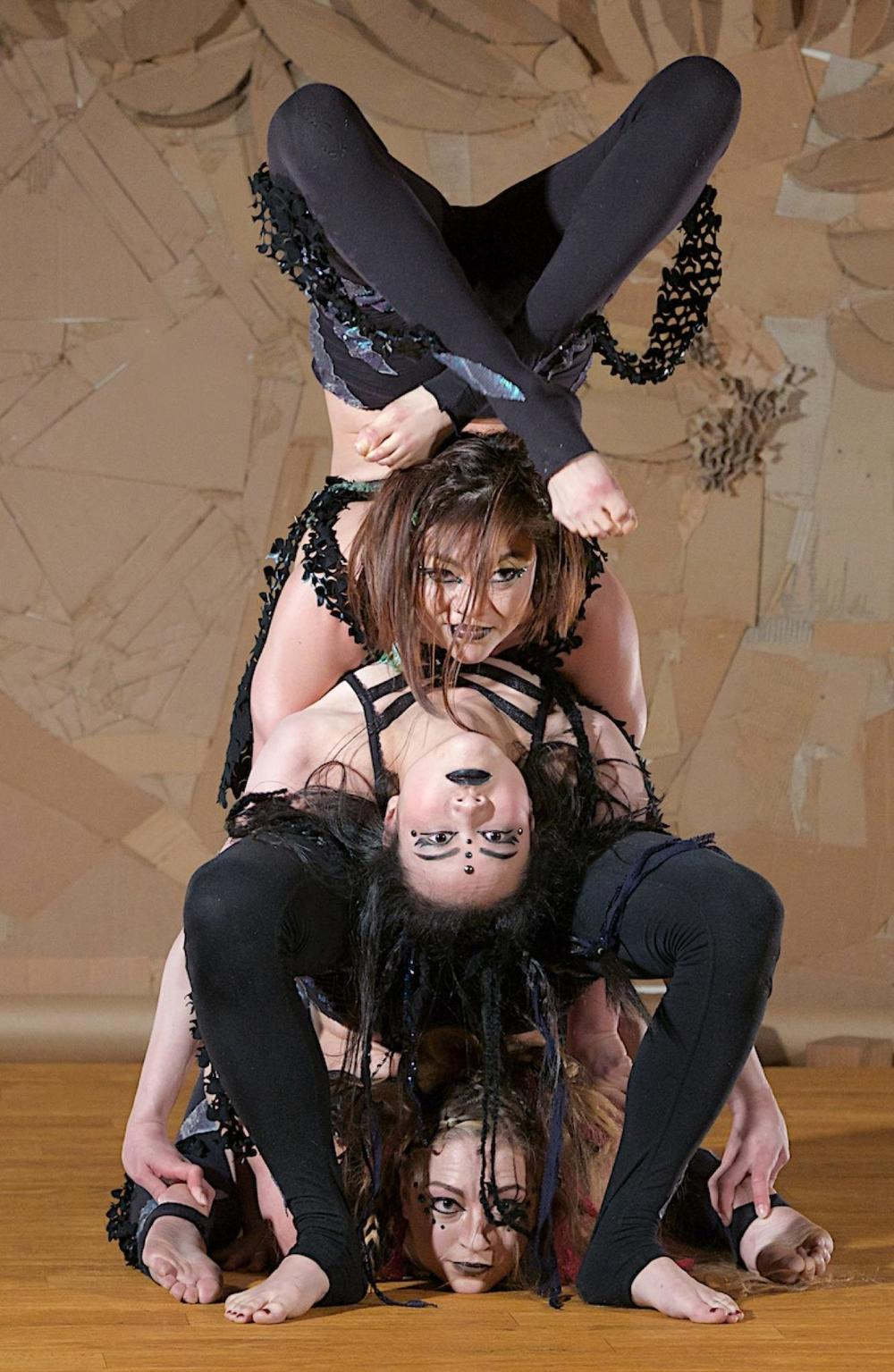 aryn group contortion.jpg