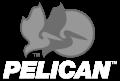 19 - Pelican Logo.png