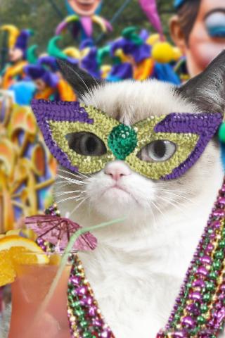 Tardi-Gras-Grumpy-Cat-Mardi-Gras.jpg