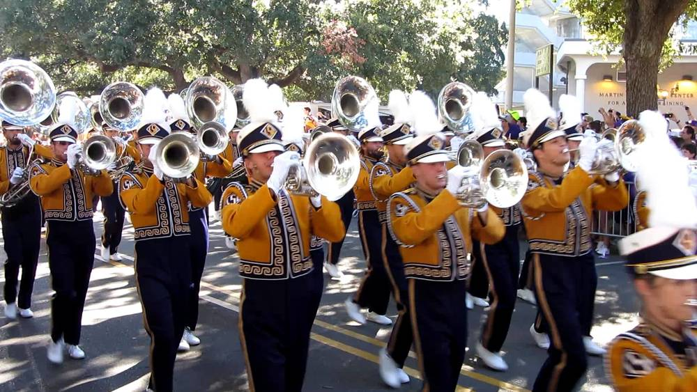 Mardi Gras Band 2.jpg