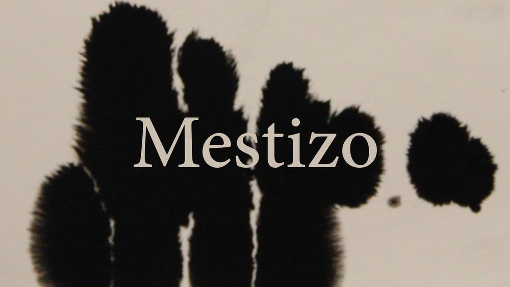 Mestizo_Still_1.jpg