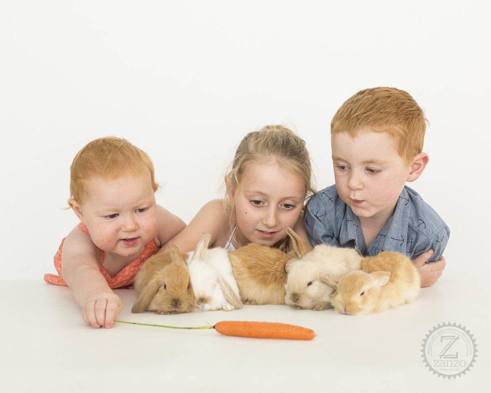 Medwin Bunnies015.jpg