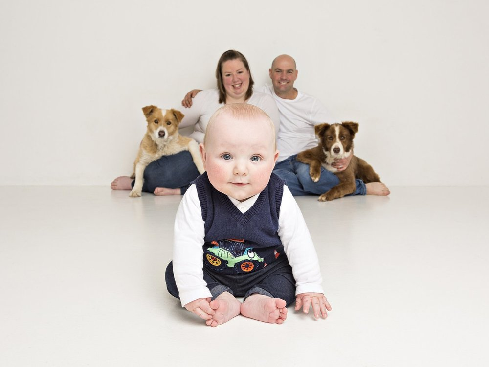 zanzo_portraits_hobart_photographer_tasmania_family_pets_dog_0072.jpg