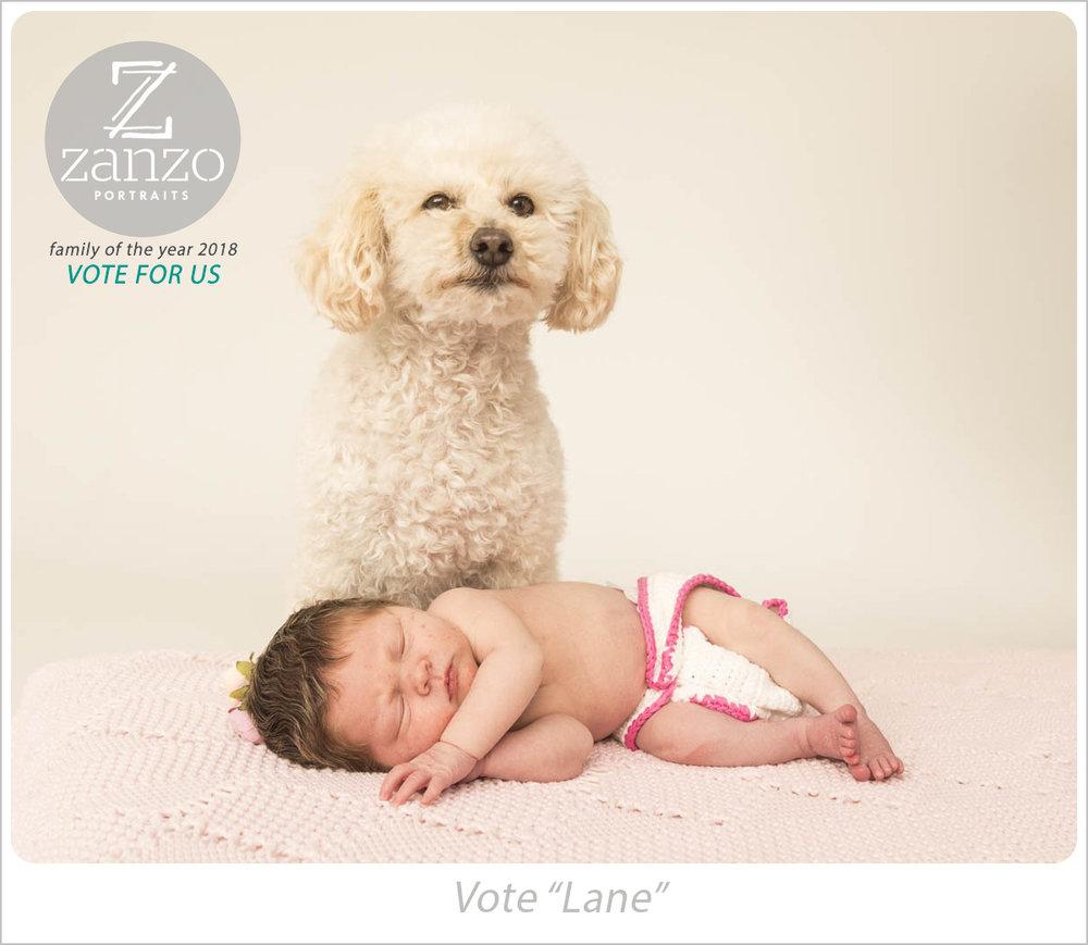 zanzo_portraits_hobart_photographer_tasmania_family__0130.jpg