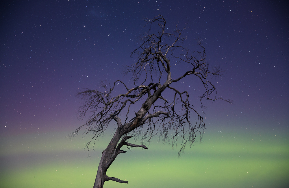 Aurora Australis, as seen in the Tasmanian midlands, Autumn 2014.