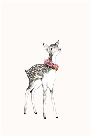 Daniela Dahf Henriques Little deer.