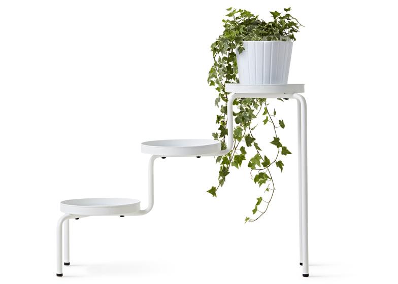 plantps.jpg