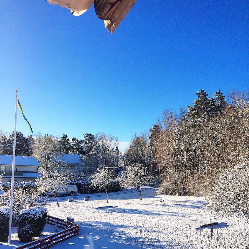 vinterwonderland.jpg