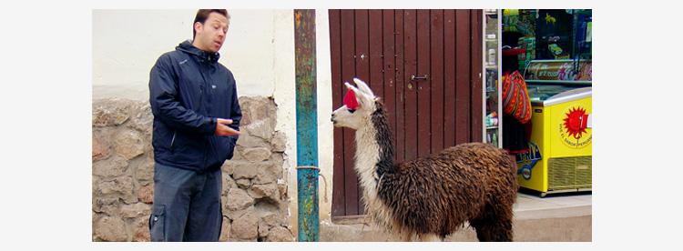 talking-to-a-llama-sml.jpg