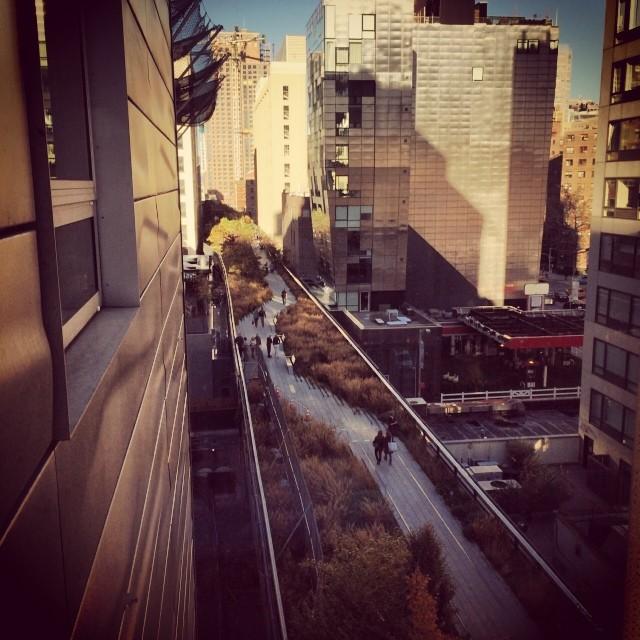 #highline #chelsea #autumn in #NewYork